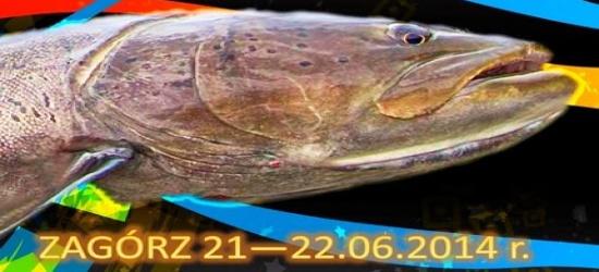 21-22 CZERWCA: Bieszczadzki Puchar Głowatki. Ostatnie dni zapisów