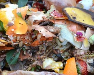 GMINA ZAGÓRZ: O planach budowy kompostowni. Na spotkanie zaproszono eksperta