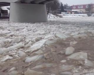 ZAGÓRZ: Osławą spłynęła kra. Zator lodowy przy ujściu do Sanu (ZDJĘCIA, FILMY)
