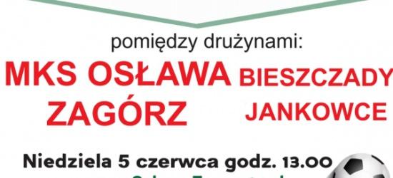 Zapraszamy na mecz piłkarski MKS Osława Zagórz – Bieszczady Jankowce